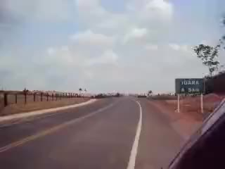 公路上牛仔放牧喂养的牛群们