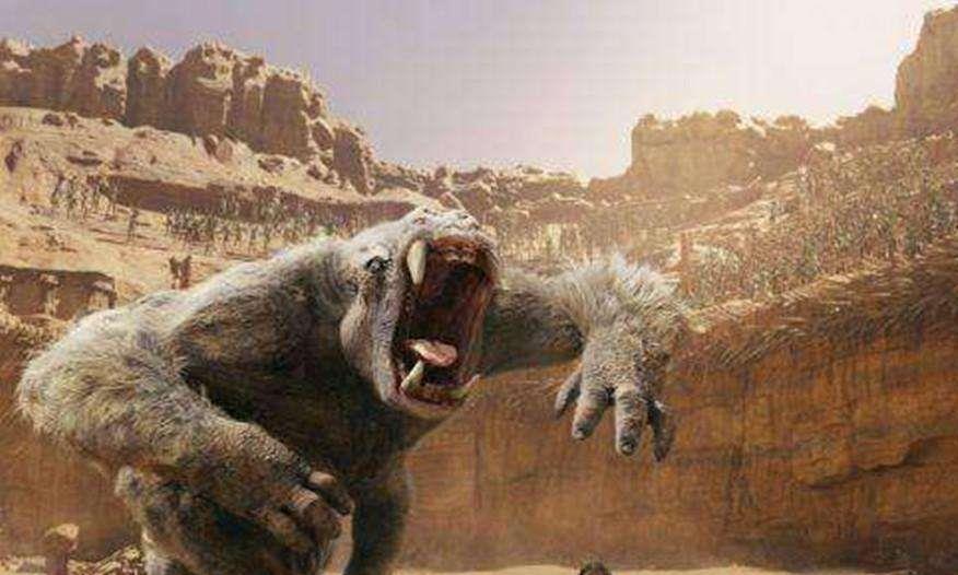 世界上最大的猿猴,高度可达3米,已于10万年前灭绝!