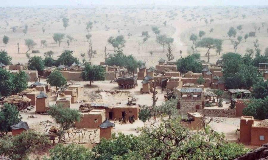 """全球唯一在地图上标记出的树,在沙漠存活200年,被视为""""神树"""""""