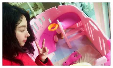樊少皇娇妻为女儿搭造小游乐场,网友直呼:心灵手巧!