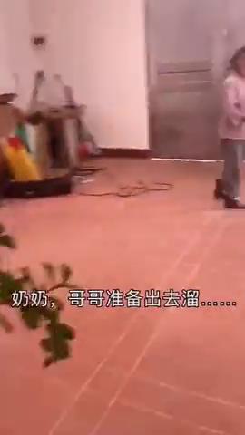 见过遛狗遛猫的,第一次见溜冰的