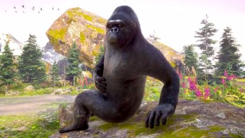 儿童卡通片:小猴子与大猩猩大犀牛踢足球
