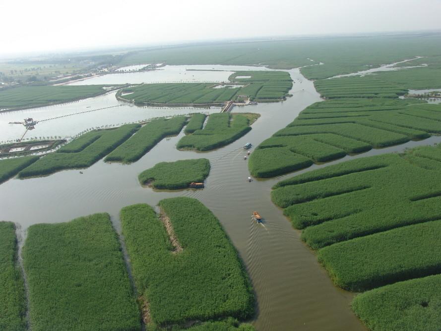 """河北保定的白洋淀景区,被称为""""北国江南""""!"""