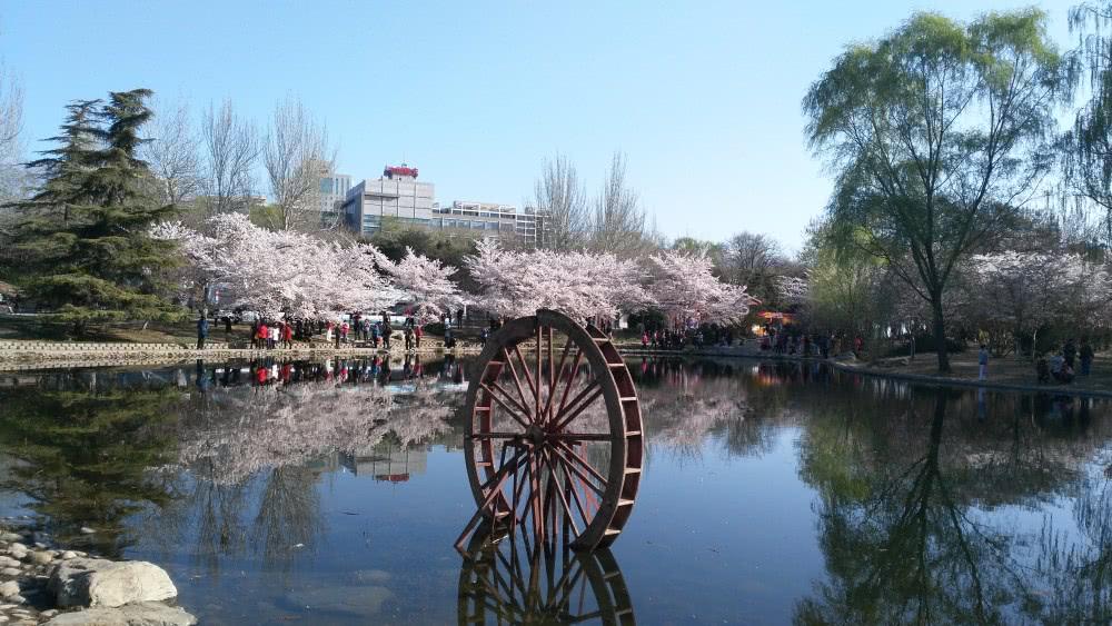 北京一座低调的公园,曾是皇家园林,800年历史,门票仅2元!