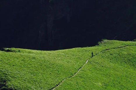 百花深处,金莲花开,是风光摄影、学生考察、家庭旅游的好地方
