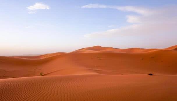 驴友提醒:沙漠的西瓜和海藻千万不能碰,就算看到也当什么都没有