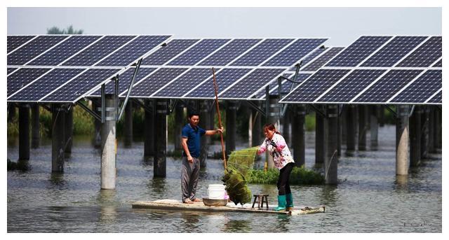 上层光伏发电 下层水产养殖,渔光互补助力农民助力乡村振兴