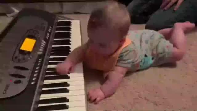 搞笑萌娃狗狗嫌弃宝宝弹钢琴连忙捂耳朵好难听呀