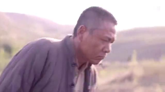 老农民:村头的树倒了,老农民大喊撤退,种点东西不容易