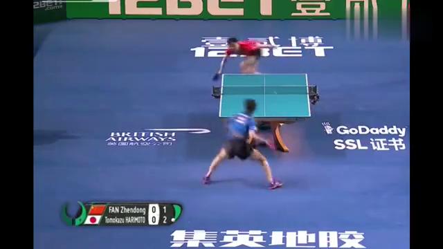 樊振东世乒赛精彩得分打的日本选手张本智和直跺脚
