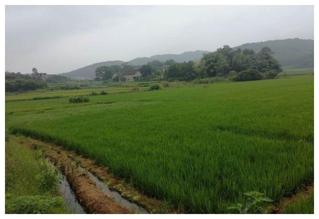 祁阳县下马渡镇汤家岭村又新修了两条乡村路