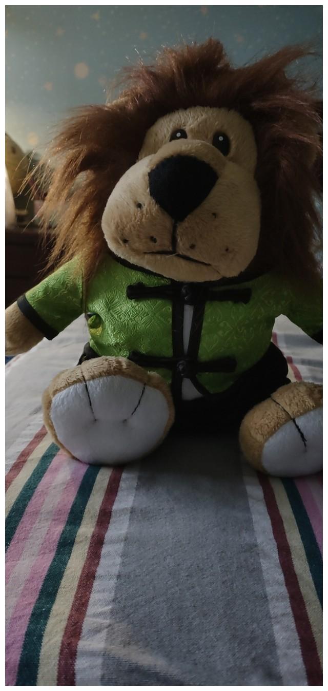 解衣暖狗狗,爱心[爱心] 满满的狮子王![憨笑][憨笑][憨笑]