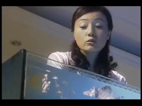 捕蛇行动:美女无意发现,自家鱼缸里竟藏着一把手枪,却毫不知情