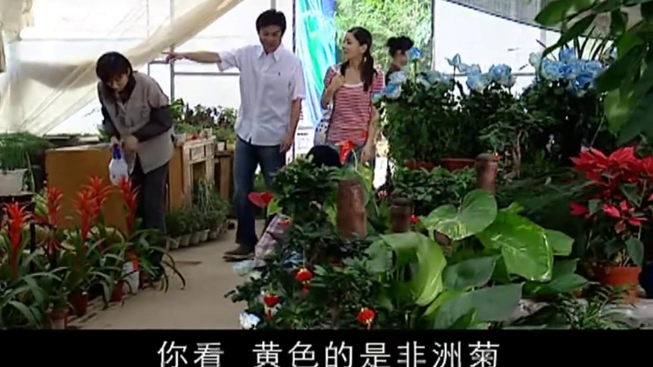 小伙带美女来花卉园,谁知小伙突然甜言蜜语,美女慌了:你说什么
