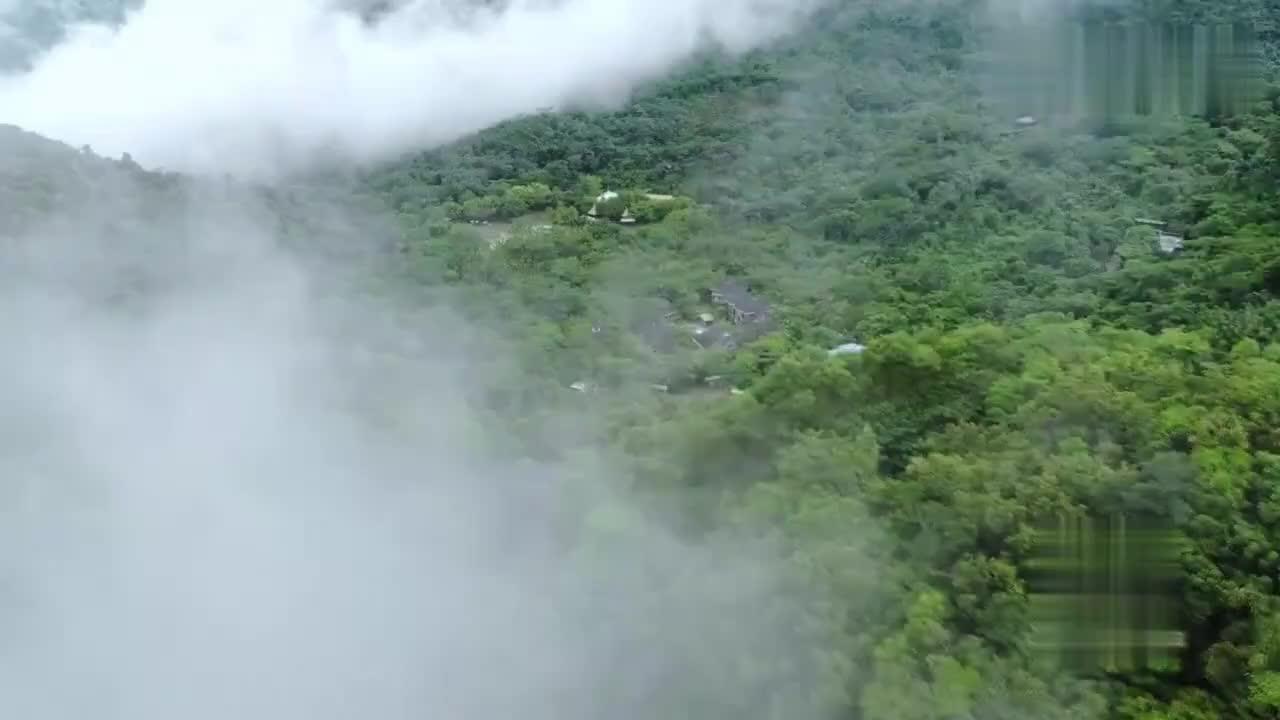 海南三亚热带雨林呀诺达游记一起来看看吧