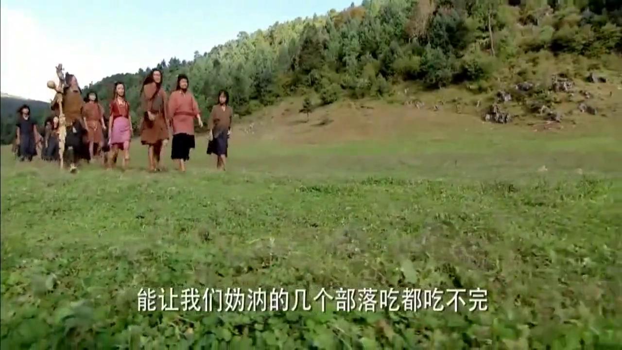 大舜:舜帝顺应天意,竟能让野象帮忙耕种,部落首领看得一愣一愣