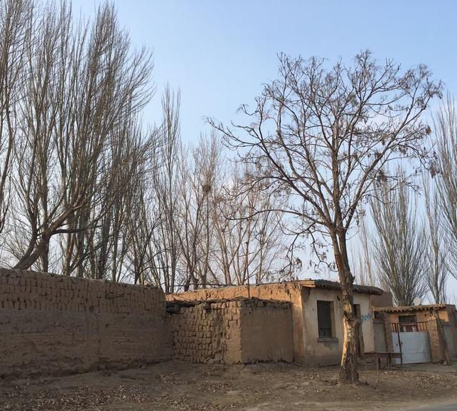 2020年宁夏利通区萧条落后的农村景象