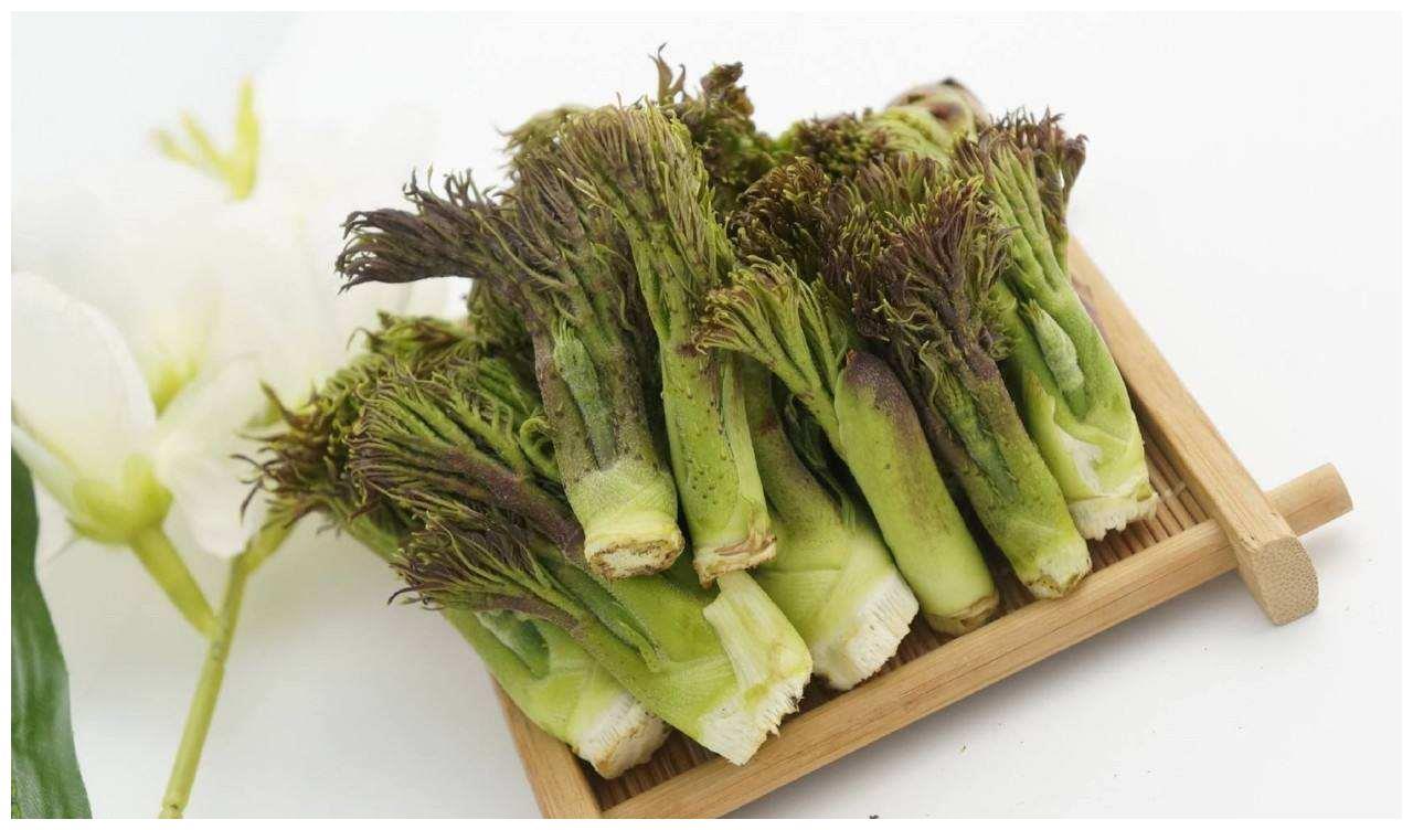 """农村这种野菜,被称为""""天下第一山珍"""",还分公母,你见过吗?"""