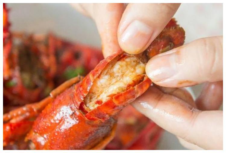 龙虾里的虾黄真的可以吃吗?是毒素还是营养,终于弄明白了!
