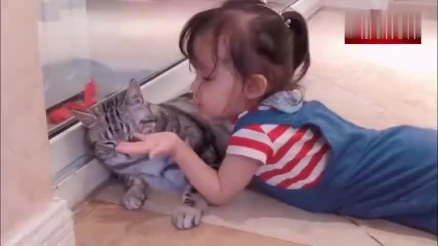猫咪和小主人互相依偎在一起温馨温暖的感觉真好呀