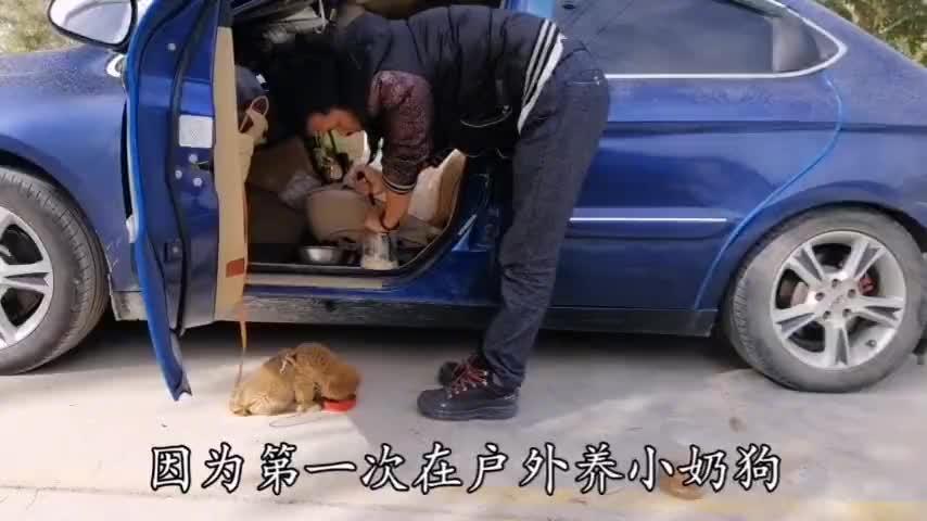 小夫妻自驾游新疆返程路上领养小狗不吃狗粮只能天天这么喂
