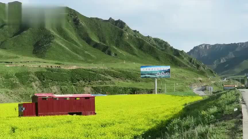甘肃省祁连山山丹军马场