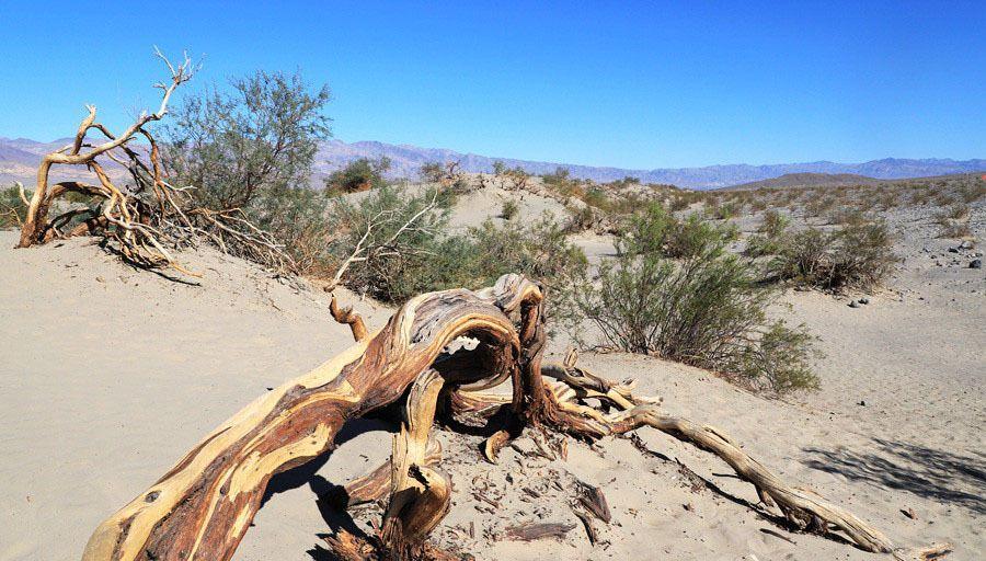 异国风景——美国死亡谷国家公园