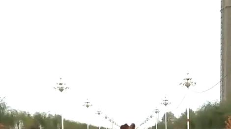 马路上偶遇奔跑的骆驼,求面包车司机的心里阴影面积