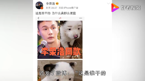 当红明星撞脸动物李荣浩同款被出售周冬雨撞脸狐狸李易峰神似