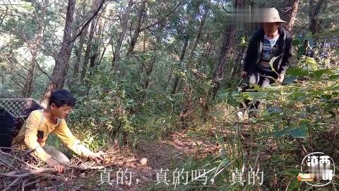 农村小伙去树林里采蘑菇意外发现形状怪异的野生菌你认识吗