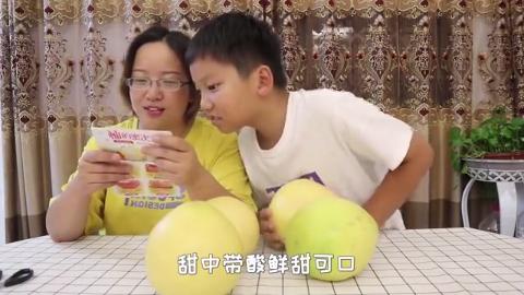 """试吃自媒体大咖""""巧妇9妹""""家的柚子,这才是真正的三红蜜柚"""