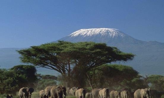 非洲最高山峰:一座山拥有四季风光,爬前还需先花20多万!