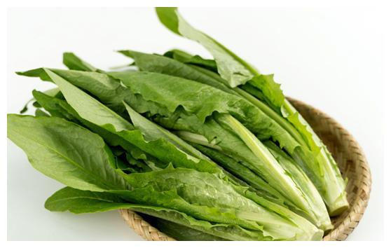 """青菜中的""""上品"""",营养高于生菜,优于莴笋,全家都爱吃"""