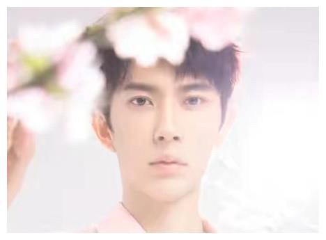 他歌手出道屡演男主,跟杨幂比美搭档张智尧,新剧上线却脸僵劝退