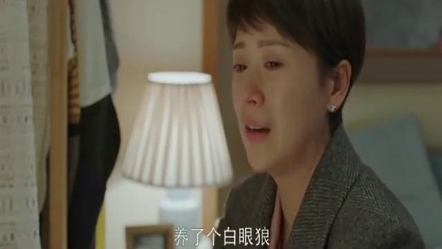"""小欢喜:方一凡成了""""白眼狼""""童文洁瞬间泪流满面,扎心了"""