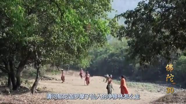 佛陀悉达多阻止将士用101头动物祭祀,差点被频婆娑罗国王斩杀