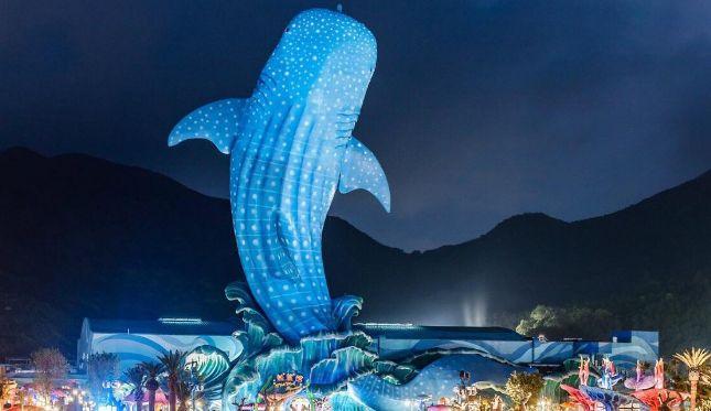 长隆国际海洋度假区,尽情展现海底世界奇幻的一面,尽收眼底