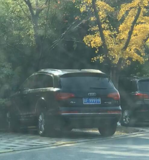 """南通文峰公园偶遇""""苏F99999""""奥迪Q5,多年都没有换车!"""