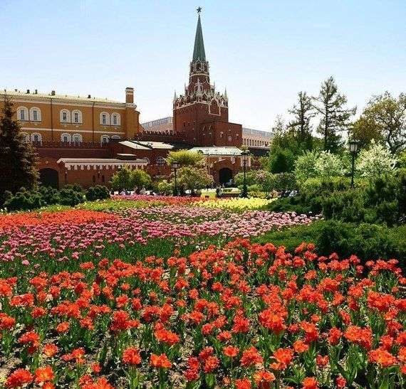 姹紫嫣红的莫斯科之春:俄罗斯摄影师镜头下的首都美景