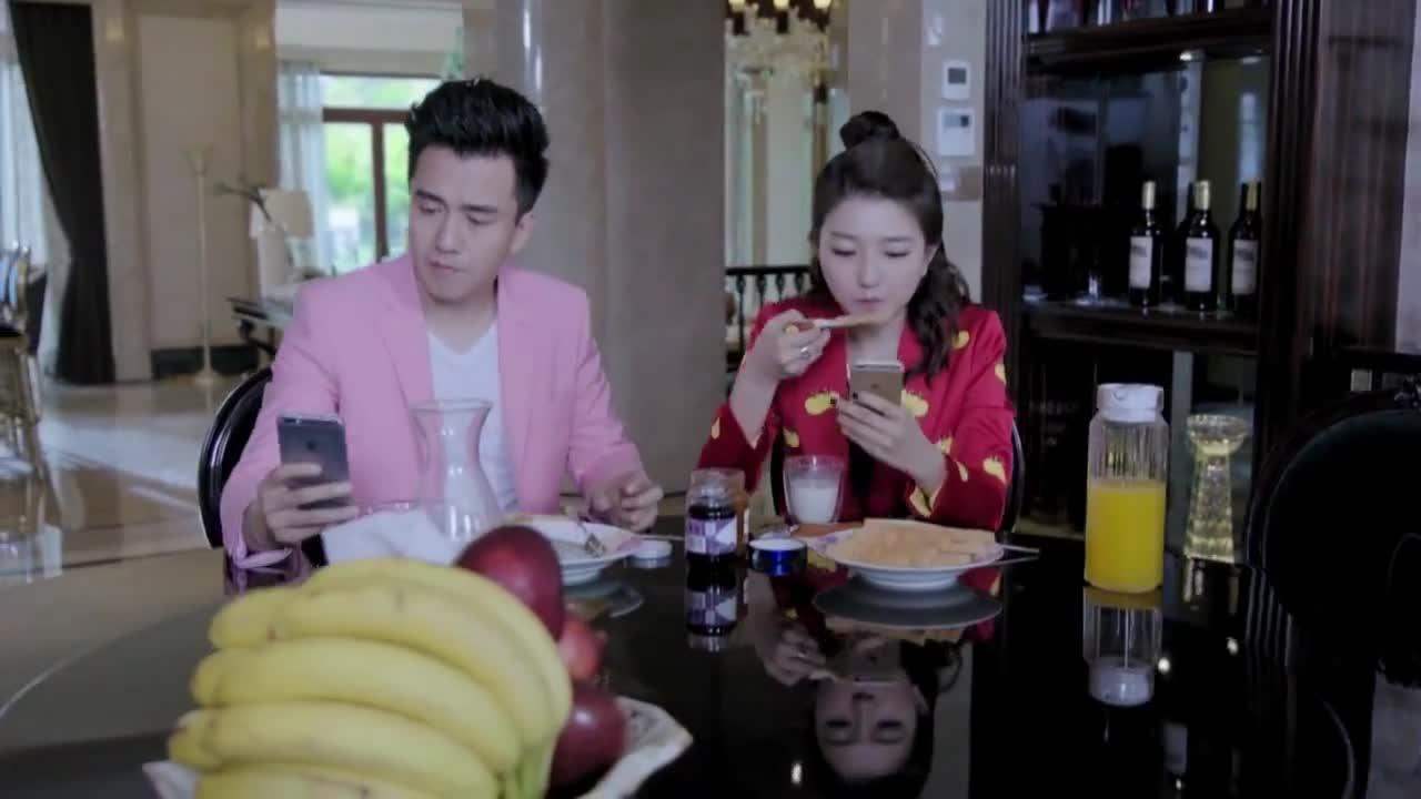 江村知道妻子是霍栀伪装的,却好像不生气,拿了盆花去找她
