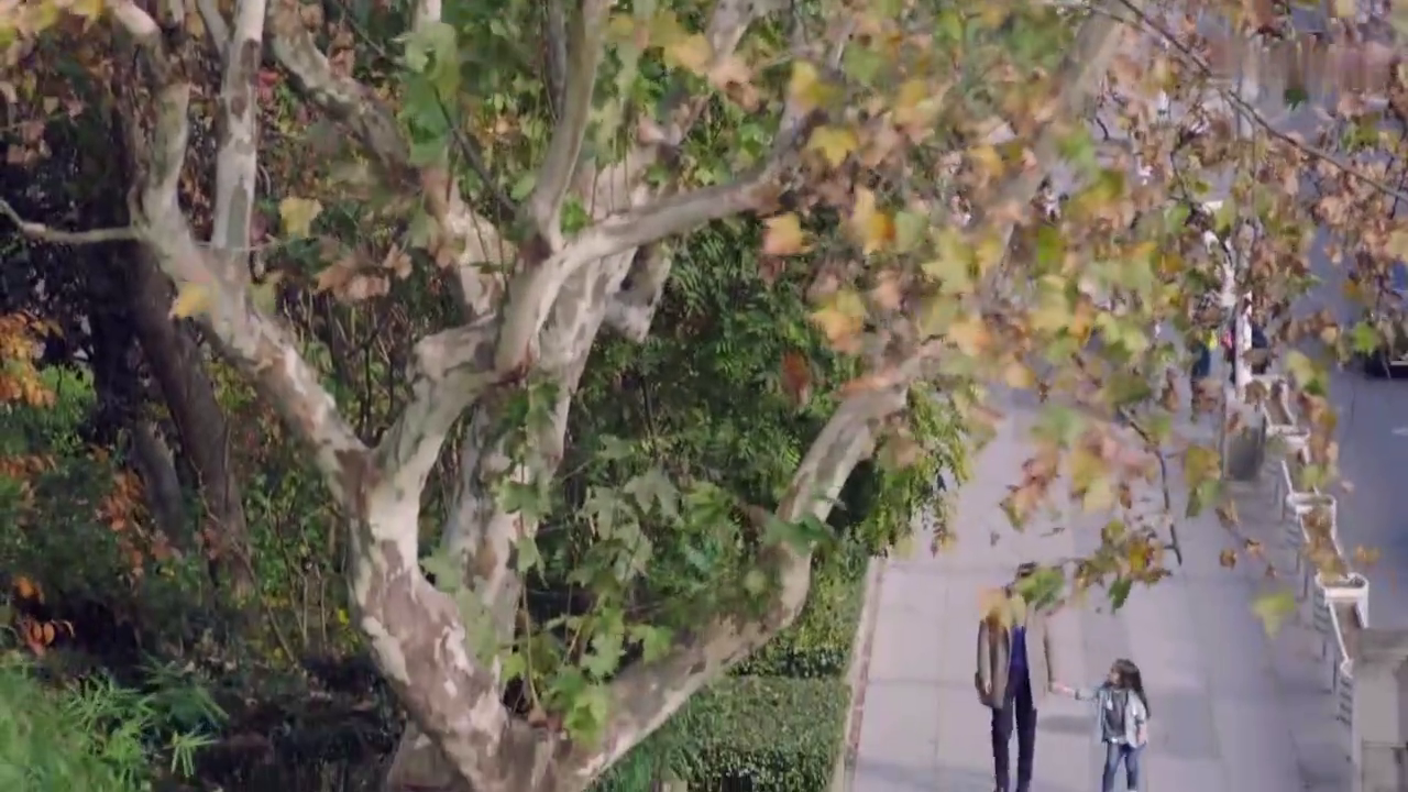我爱男保姆第30集:可可贪玩险走失,虚惊一场幸无事