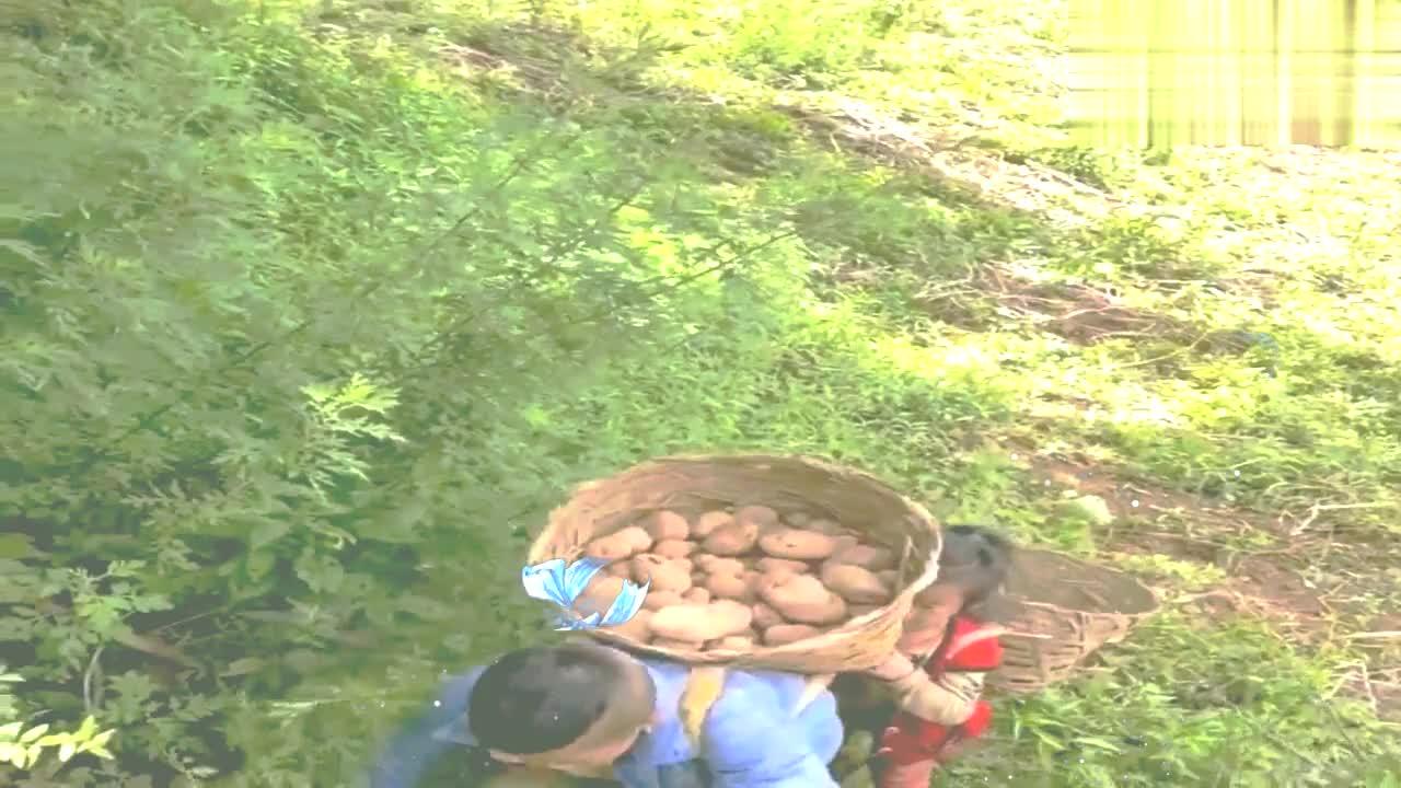 哥哥和妹妹背土豆回家,孩子穿着棉袄配拖鞋,看着心疼!