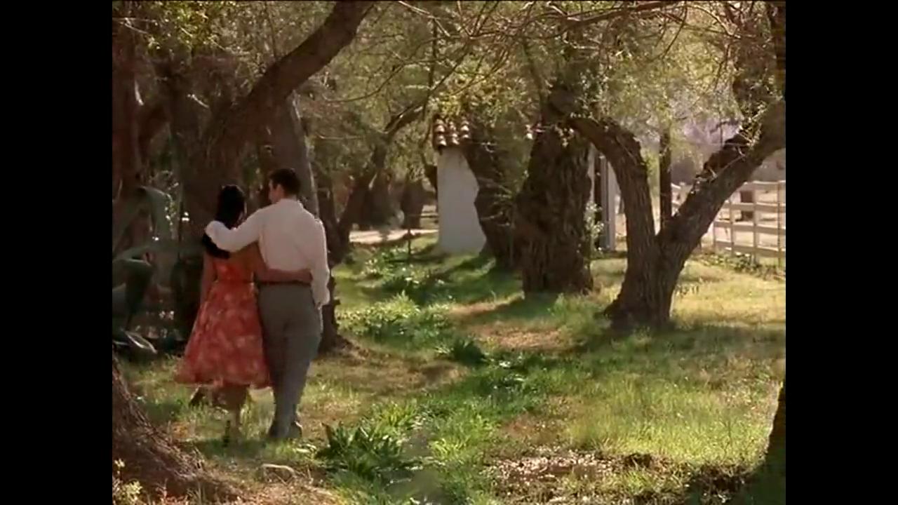 夫妻白天在秋千上约会,两人含情脉脉,甜蜜热吻在一起