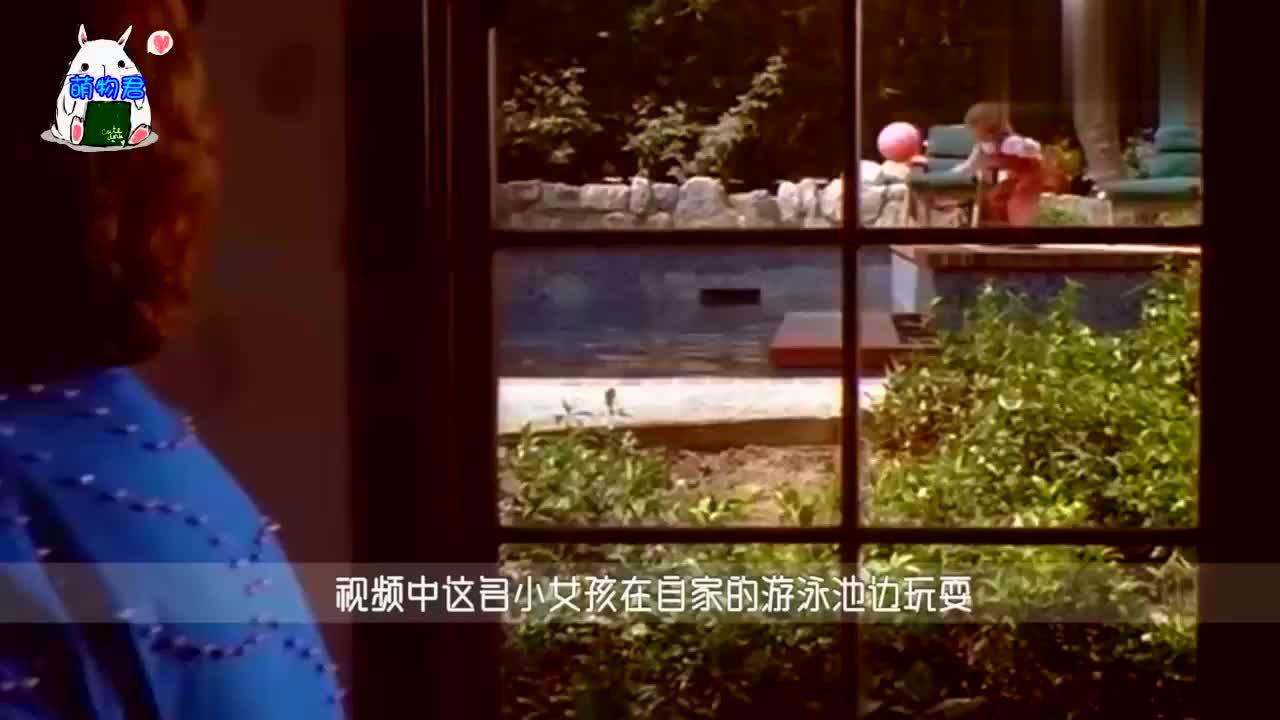小女孩溺水,危险时刻狗狗将其救起,镜头记录感人全程