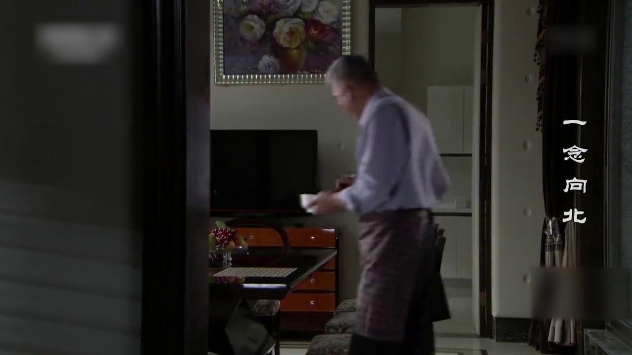 私生子来看父亲,父亲非常激动,吩咐佣人在面里多放点营养品