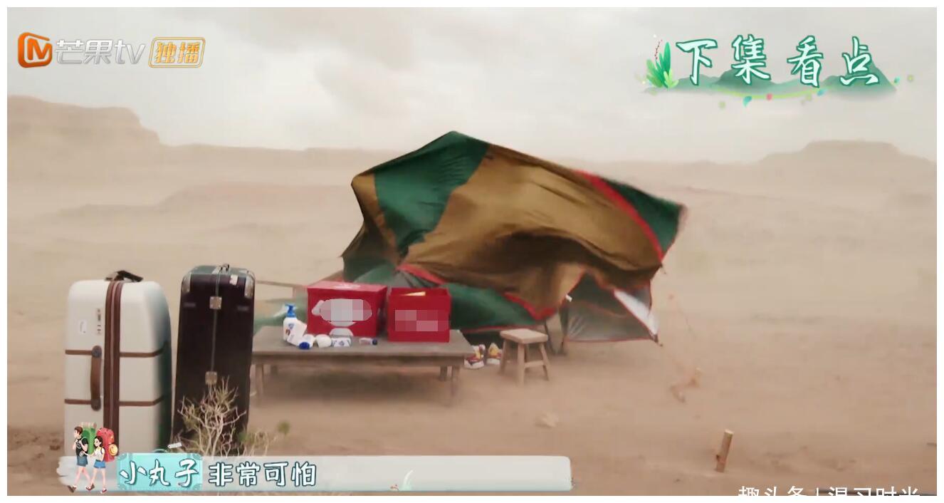 变形计升级!突遇沙尘暴,嘉宾被帐篷压倒,徐锦江摔桌子要退出!