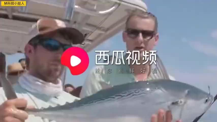 最聪明的智能钓鱼杆,还用上了无人机技术,有它钓鱼变得更简单
