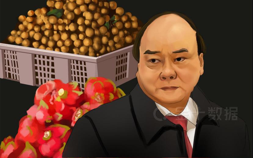 对华出口跌14.5%!质量不达标遭中国减购,越南果蔬转向欧盟市场