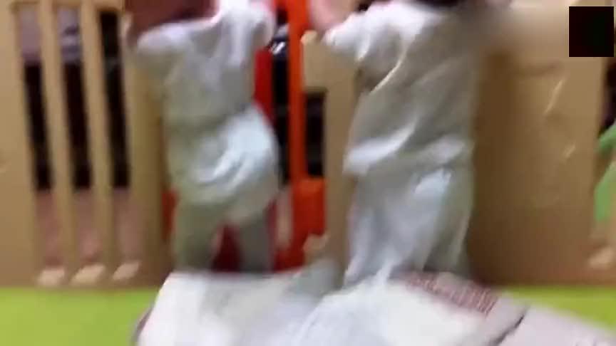双胞胎宝宝穿着尿不湿就开始关心国家大事,一边看新闻,一边还笑