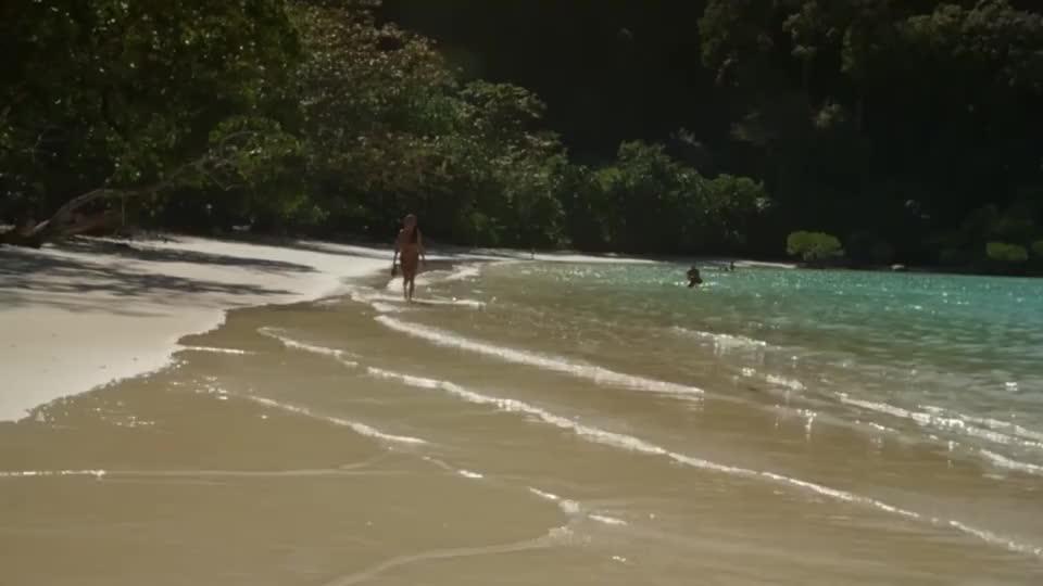 男子沙滩游玩路遇搁浅小海豚放归海洋两年后竟再次相遇